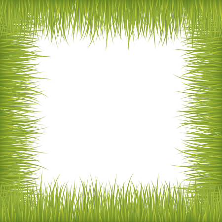 Fresh grass on vector frame over white background.