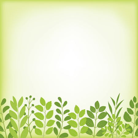 Fresh leaf vector frame.