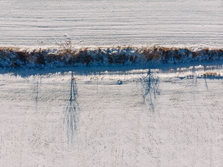 sunny snow-covered field in winter, top view of the shadow of the frozen trees Imagens - 133459123