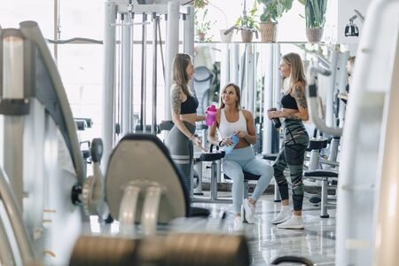 attractive girls in sportswear at the gym communicate. sports life and fitness atmosphere. healthcare.