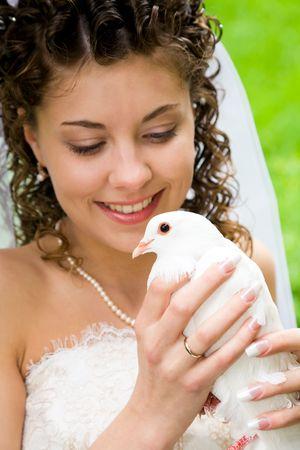Image of white dove in pretty bride�s hands  photo