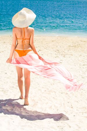 Portrait of woman with pareo walking aback along sandy beach during vacation  photo