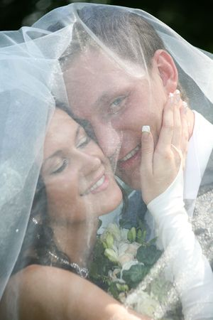 marriageable: Portrait of happy marriageable touching face of groom under veil