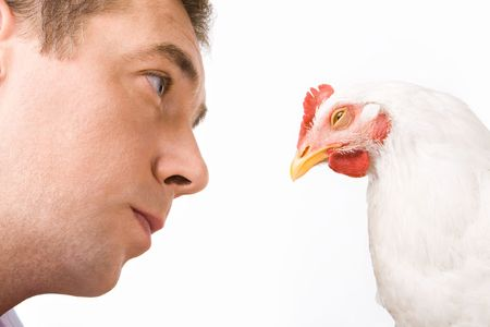 Face of man looking at chicken with calm expression on it