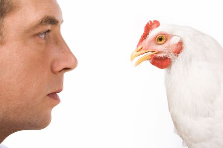Profiles of man and white chicken looking at each other