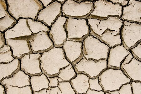Close-up of split piece of land in desert with lots of clefts Stock Photo - 4258104