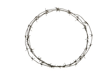barbs: Image of round diadem made up of barbed wire over white background