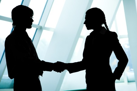 Profiles of two business partners handshaking after striking a deal photo