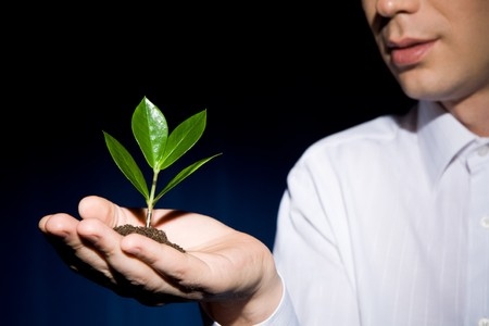 Image of human hand with green sprout at background of man Stock Photo - 4544780