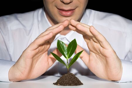 Photo of businessman�s hands preserve a young plant photo