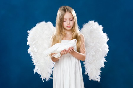 Portrait of innocent angel with nice dove looking at it with love photo