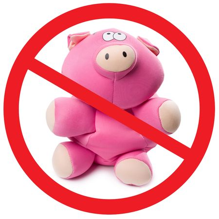 Photo of pink soft toy pig with sign appealing to stop new virus photo
