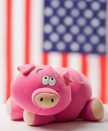 Photo of pink toy pig on background of American flag Stock Photo - 6073636