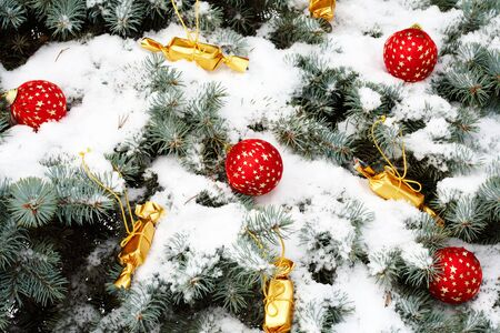 Image of red decorative toy balls and sweets in golden wrapping on spruce branch with snow on it Stock Photo - 6109117