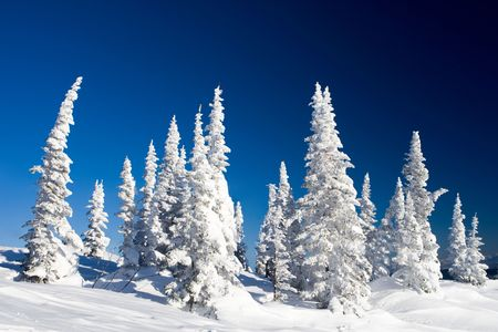 flurry: Photo of wonderful scene somewhere in mountains or winter resort