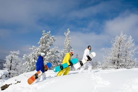 snowdrift: Portrait of group of sportsmen with snowboards walking down snowdrift