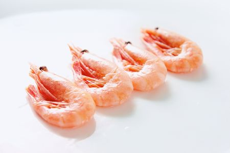 Image of tasty shrimps lying in row over white background Stock Photo - 6669762