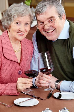 Image of happy senior couple holding wine glasses and looking at camera Stock Photo - 6894160