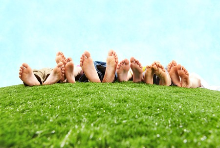 Image of several legs lying on the grass and resting  photo