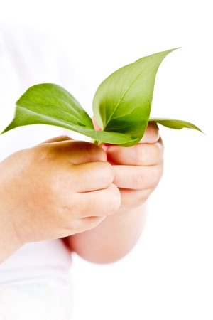 natura: Conceptual image of hands of baby holding fresh green leaves