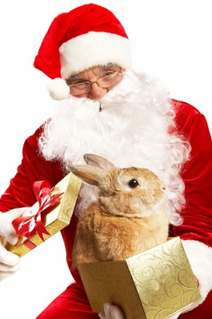 Photo of happy Santa Claus holding giftbox with cute rabbit photo