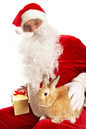 Photo of happy Santa Claus with cute rabbit photo