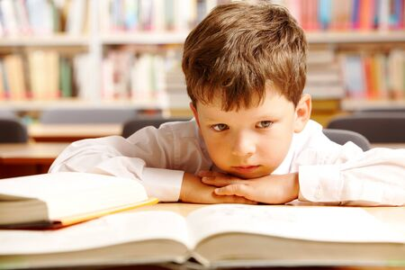 Portrait of a schoolboy sitting at table with books  photo