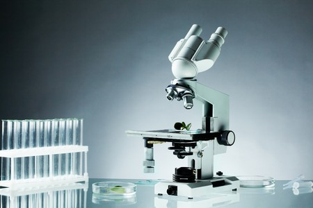 biomedical research: Image of different glassware and microscope on workplace in laboratory Stock Photo