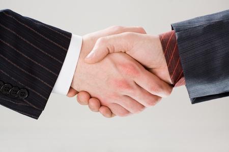 mani che si stringono: Immagine di stringere la mano a fare un accordo su sfondo bianco