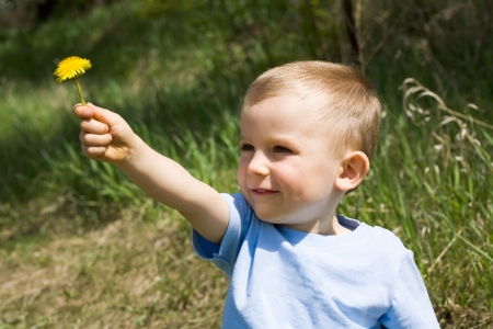 flowers boy: Cute lad giving yellow dandelion to somebody on background of green grass Stock Photo