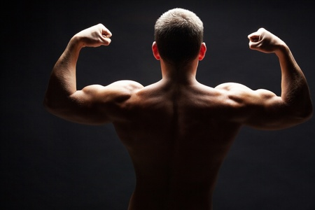 male muscle: Back view of shirtless man demonstrating his strong arms