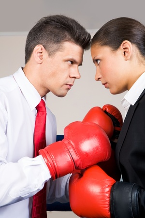 contradiction: Photo of aggressive business partners in boxing gloves fighting with each other