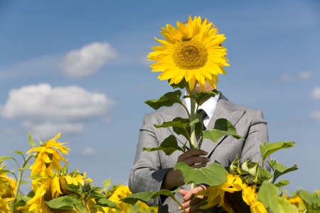 Image of female hiding face behind sunflower outdoors Stock Photo - 8492039