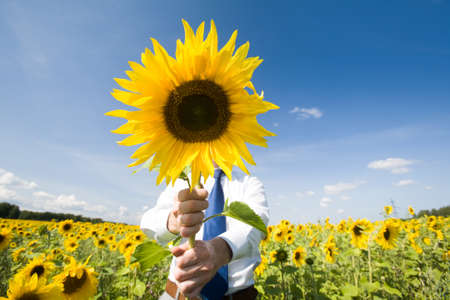 Image of man hiding face behind sunflower and giving it to you Stock Photo - 8494278