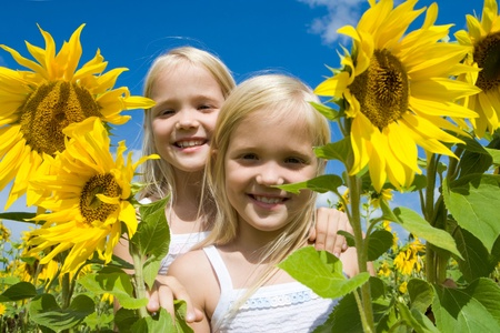 Portrait of cute girls looking at camera in sunflower field on sunny day photo