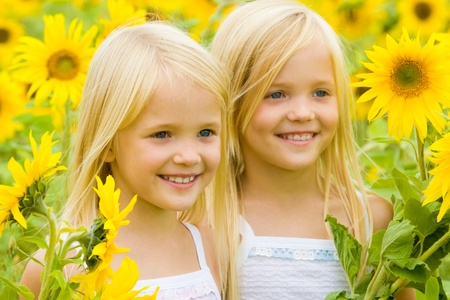 twin sister: Portrait of cute female twins looking aside and smiling in sunflower field