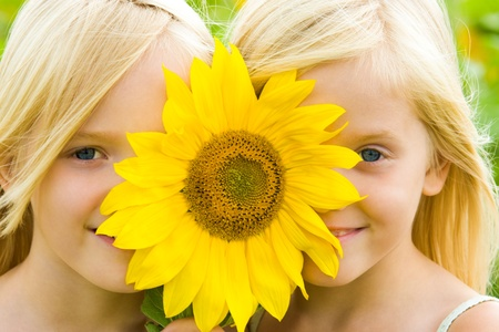 Close-up of pretty twins looking at camera from behind of gaudy sunflower photo
