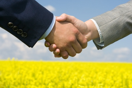 striking: Photo of handshake of business partners after striking deal