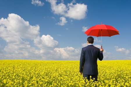 business protection: Rear view of businessman with red umbrella walking in yellow meadow Stock Photo