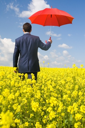 Rear view of businessman with red umbrella going through flower field Stock Photo