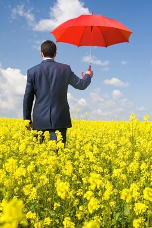 Vista posterior del empresario con paraguas rojo pasando por el campo de la flor Foto de archivo