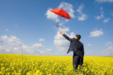 Image of young businessman stretching arm towards red umbrella in flower field photo