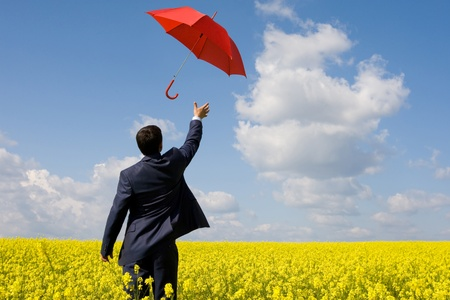 red umbrella: Rear view of young businessman stretching arm towards red umbrella in flower field
