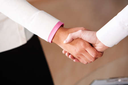 Image of partners handshake after signing contract photo