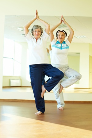 activity: Portrait of two aged females doing yoga exercise in sport gym