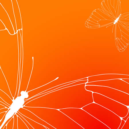 Vector illustration of orange background with white contours of the two butterflies  Vector