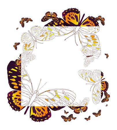 animal: Vector illustration of square frame of butterflies  Illustration