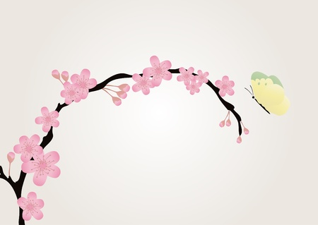 botanical branch: Vector illustration of cherry-tree branch isolated on pink with a butterfly fluttering over it