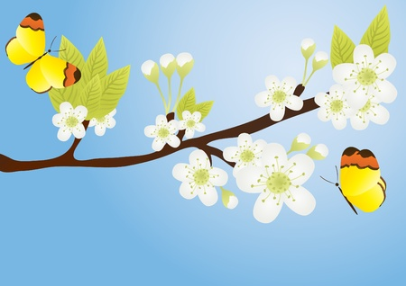 appletree: Vector illustration of apple-tree branch with butterflies over it isolated on blue