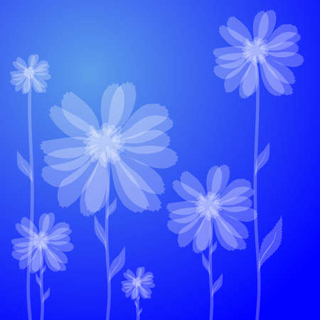 Vector illustration of white flowers against blue background  Vector